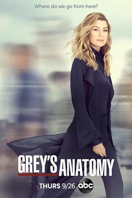 实习医生格蕾 第十六季 BT/迅雷下载