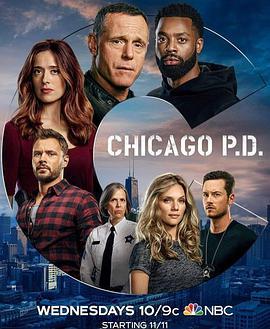 芝加哥警署 第八季