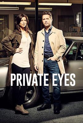 私家侦探第五季 第五季 BT/迅雷下载