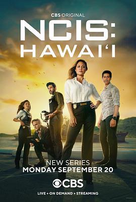 海军罪案调查处:夏威夷